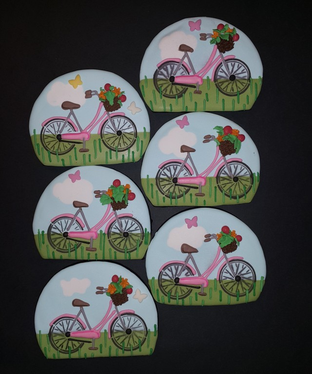 201802 Bicycles